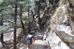 First steps up towards Namche Bazaar.  There's going to be a LOT more of these. Groan.